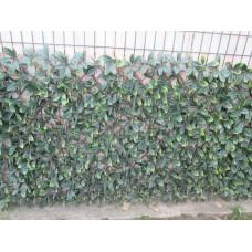 Декоративна ограда Хармоника ЛУКС - Маслина H=1.0 x L=2.0m Цвят зелен