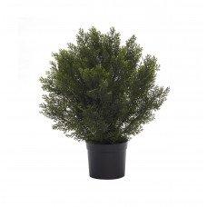Изкуствен храст в саксия - Кедър 61 см