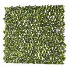 Декоративна ограда Хармоника Чемшир H=1.0 x L=2.0m Цвят: Тъмно зелен