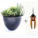 Керамична кашпа с подправки - Микс + Ножица за цветя и билки Solid Microtip SP13